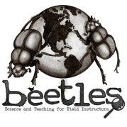 BEETLES - Logo